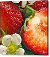 Strawberries And Vanilla Acrylic Print
