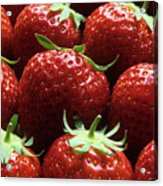 Strawberries (fragaria 'elsanta') Acrylic Print