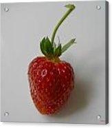 Strawberry 01 Acrylic Print