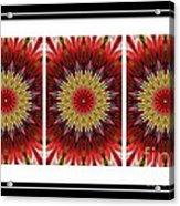 Strawberry Explosion Triptych - Kaleidoscope Acrylic Print