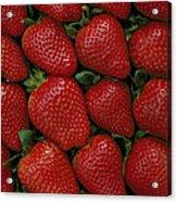 Strawberry Flats Acrylic Print