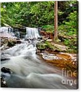 Stream At Ricketts Glen Acrylic Print
