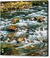 Stream Fall Colors Great Smoky Mountains Painted  Acrylic Print