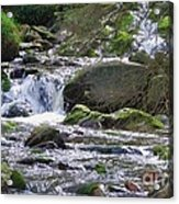 A Stream In Wicklow # 4 Acrylic Print
