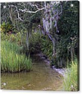 Stream To The Past Acrylic Print