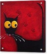 Stressie Cat Acrylic Print