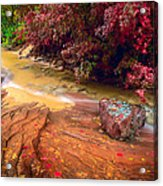 Striated Creek Acrylic Print