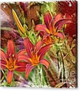 Striking Daylilies - Digital Art Acrylic Print