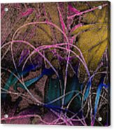 String And Fabric Acrylic Print
