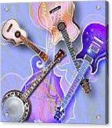 Stringed Instruments Acrylic Print by Design Pics Eye Traveller