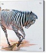 Stripes IIi Acrylic Print