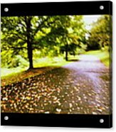 Stroll On An Autumn Lane Acrylic Print