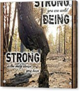 Strong Quote - Photo Art Acrylic Print