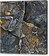Structural Stone Surface Acrylic Print