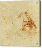 Study Of A Male Head Acrylic Print