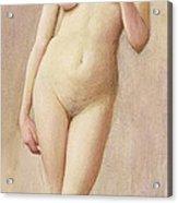 Study Of A Nude II Acrylic Print
