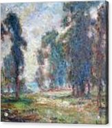 Study Of An Impressionist Master Acrylic Print by Quin Sweetman