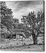 Study Of Rural Life In Smithville Texas Acrylic Print
