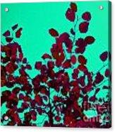 Stunning Red On Blue Sky Acrylic Print