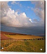 Stunning Scene Across Escarpment Countryside Landscape With Bea Acrylic Print by Matthew Gibson