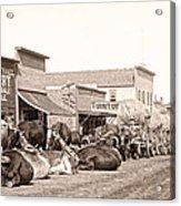 Sturgis South Dakota C. 1890 Acrylic Print