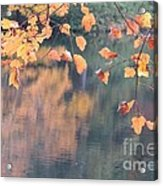 Subtle Autumn Reflections Acrylic Print