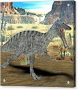 Suchomimus Dinosaur Acrylic Print