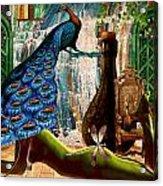 Suck My Peacock Acrylic Print