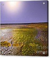 Sulphur Beach  Acrylic Print