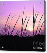 Sultry Sunset Acrylic Print