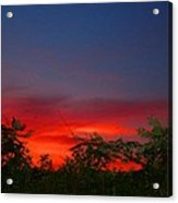 Sumac Sunset Acrylic Print
