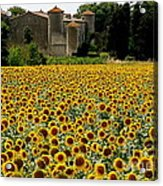 Summer Bliss Acrylic Print by France  Art