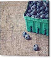 Summer Blueberries Acrylic Print