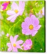 Summer Colours Acrylic Print