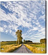 Summer Country Road Acrylic Print