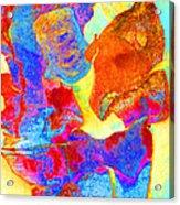 Summer Eucalypt Abstract 28  Acrylic Print