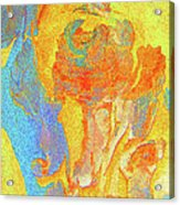Summer Eucalypt Abstract 3 Acrylic Print