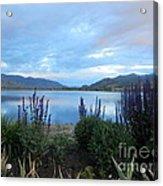 Summer Evening At Lake Osoyoos Acrylic Print by Margaret McDermott