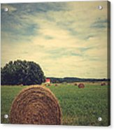 Summer Field Of Dreams Acrylic Print