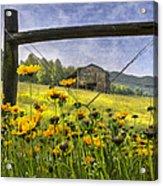 Summer Fields Acrylic Print