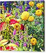 Summer Flower Garden Poster Print Acrylic Print