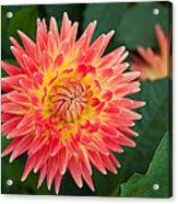 Summer Garden Joy Acrylic Print