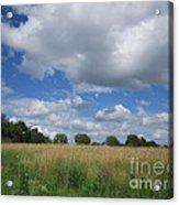 Summer Iowa Prairie Acrylic Print
