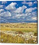 Summer Landscape Of Pag Island Acrylic Print