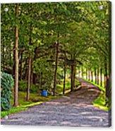 Summer Lane Acrylic Print