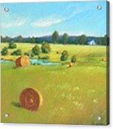 Summer Meadow Acrylic Print by Celine  K Yong