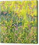Summer Meadow Acrylic Print