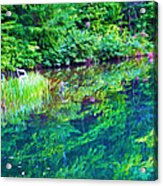 Summer Monet Reflections Acrylic Print