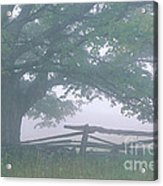 Summer Morning Fog Acrylic Print