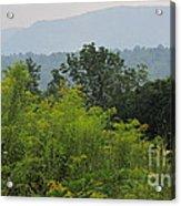 Summer Mountain Vista Acrylic Print
